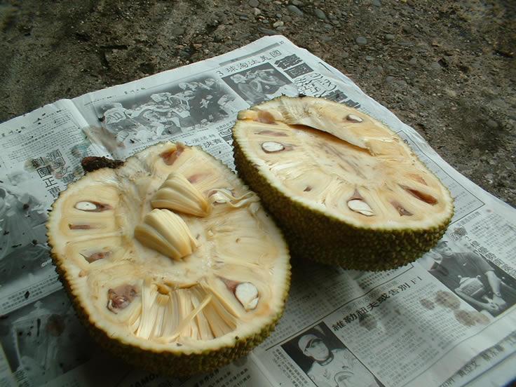 Photo of Jackfruit opened